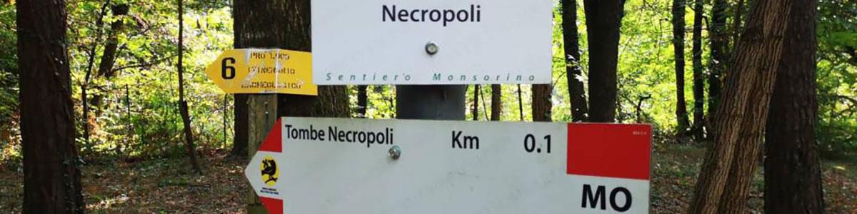 area Archeologica Monsorino di Golasecca