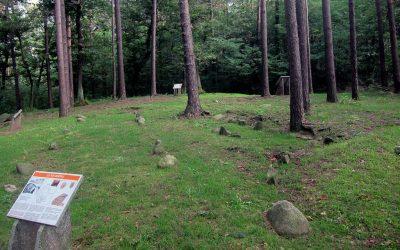golasecca area archeologica di monsorino